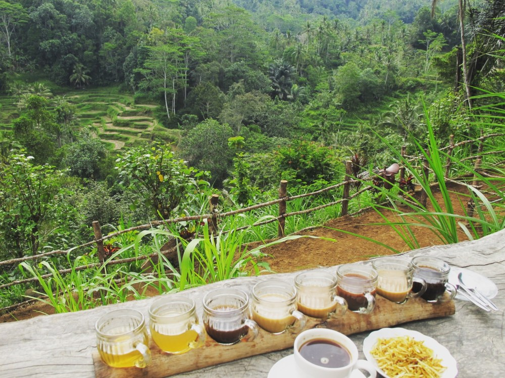 Amazing Bali - 19