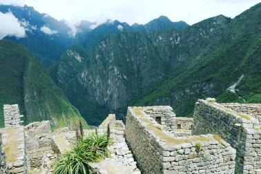 Machu Picchu - 23