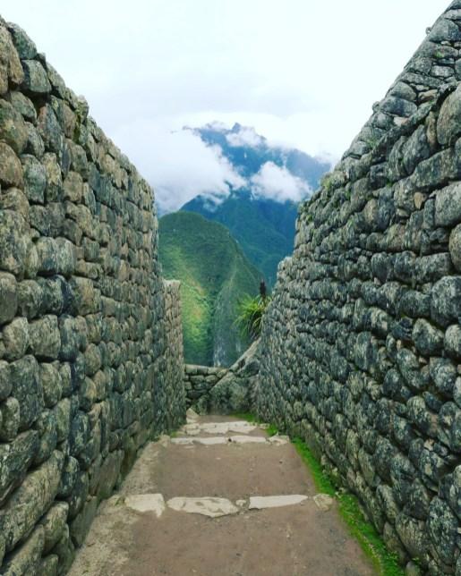 Machu Picchu - 25