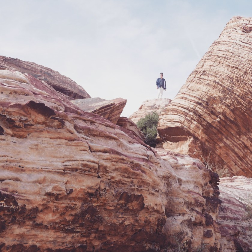 Red Rock Canyon -8