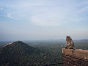 Lion Rock in Sri Lanka, from Three Perspectives One Sigiriya, three perspectives. Admiring the famous Lion Rock from Pidurangala, the ancient city's Water Gardens, and the rock summit.
