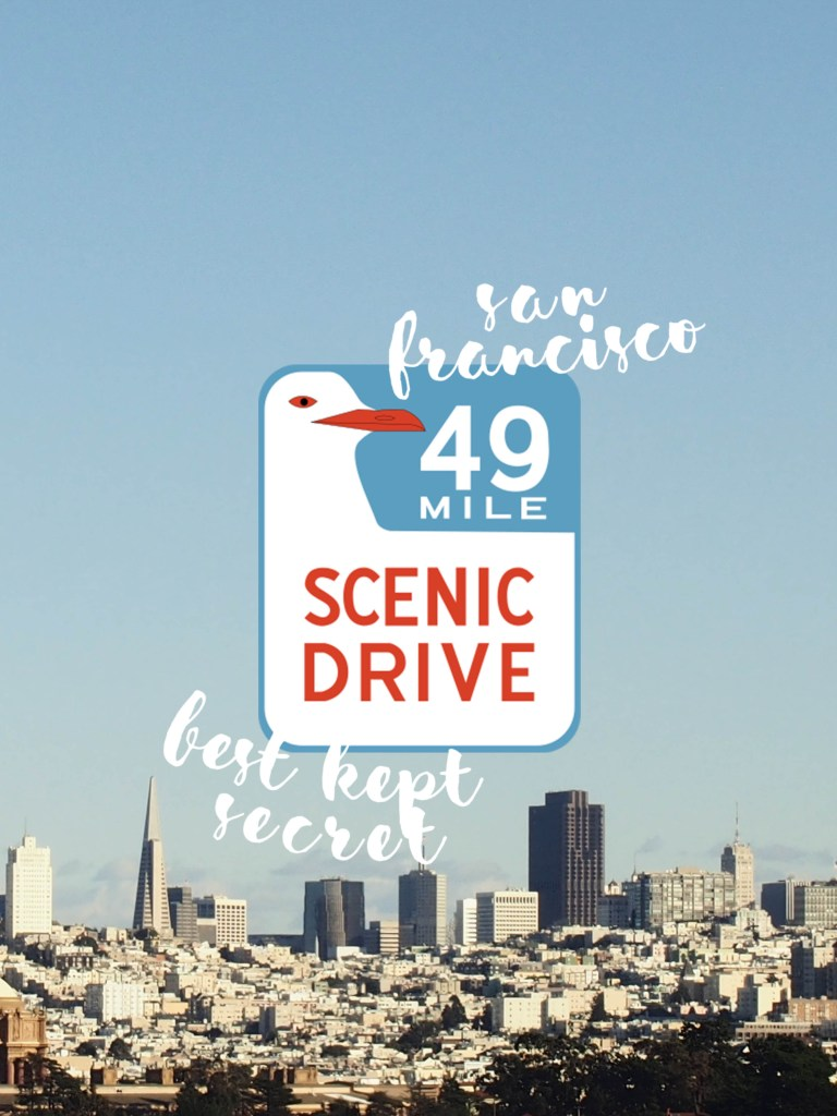 Scenic 49 Mile Drive – San Francisco's Best Kept Secret