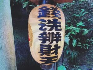 (Zeniarai Benzaiten Shrine) Hydrangea, Kamakura, Japan