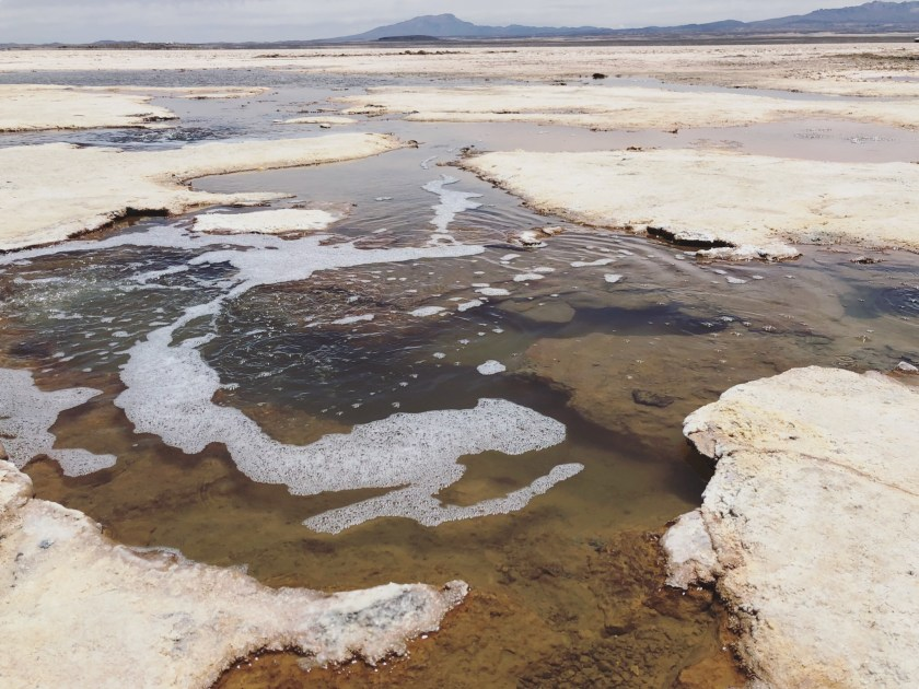 Uyuni Salt Flat, Bolivia 12