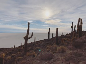"""Climb the Incahuasi island. The island is a hilly and rocky outcrop of the land – """"Incahuasi"""" literally means """"Inca house"""" and the island is a giant rock that filled with coral-like structures."""