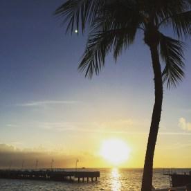 Day 3 Key West 6
