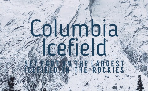 Important Things You Need to Know before Visiting the Columbia Icefield