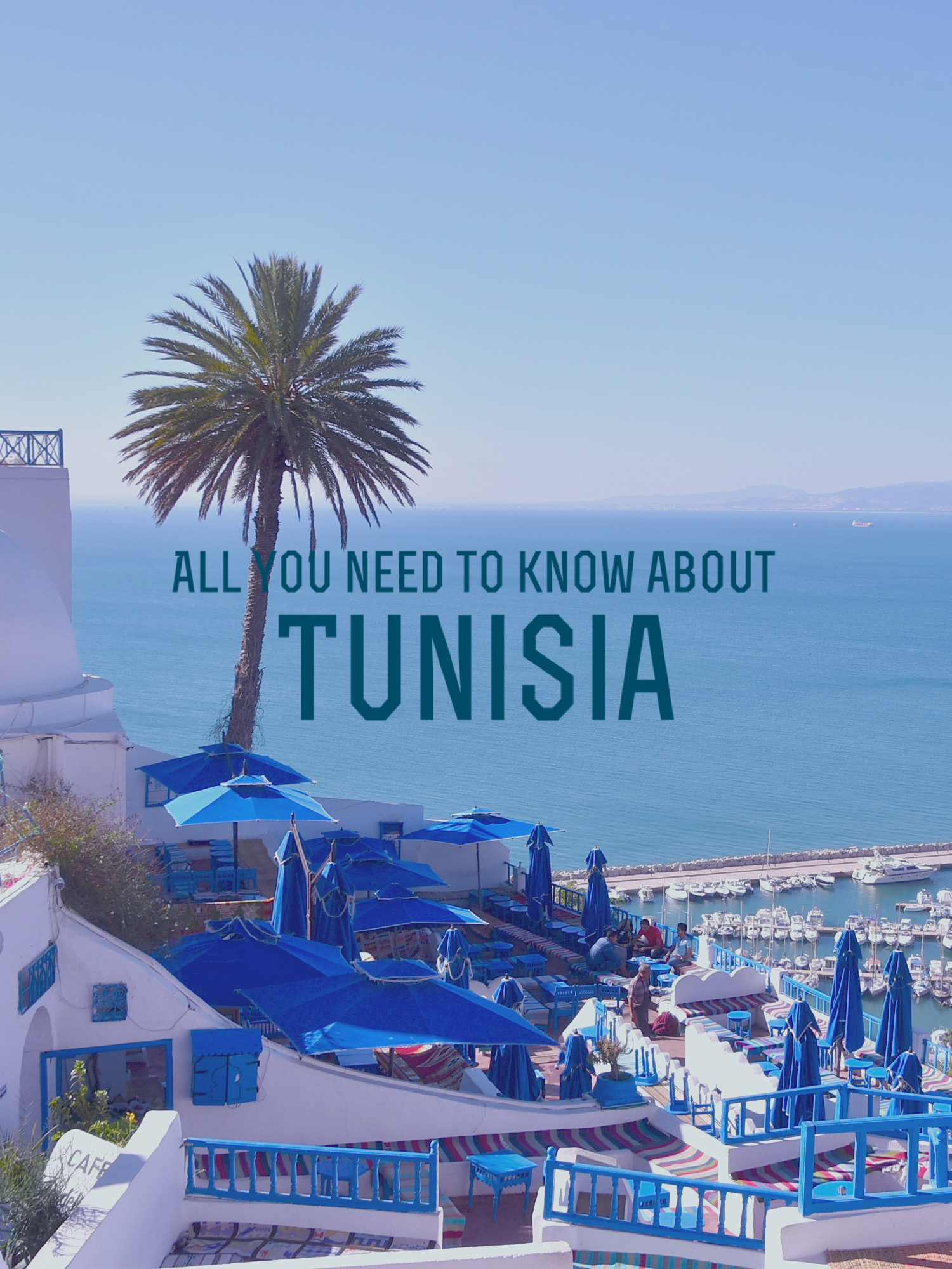 All You Need to Know about… Tunisia