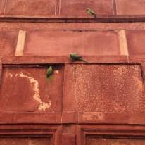 22 Creative ways of shooting Taj Mahal Other Buildings