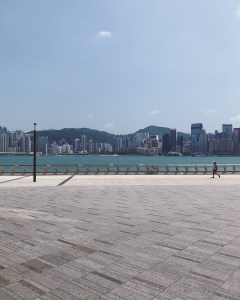 3 Star Avenue & West Kowloon 2