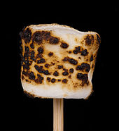 Roasted-Marshmallow