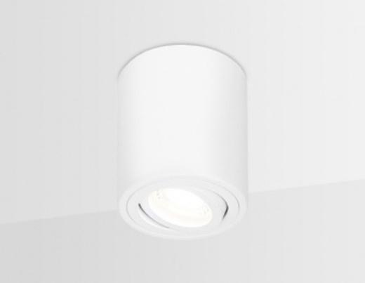 Накладной поворотный точечный светильник TN225 WH белый GU5.3 D80*100