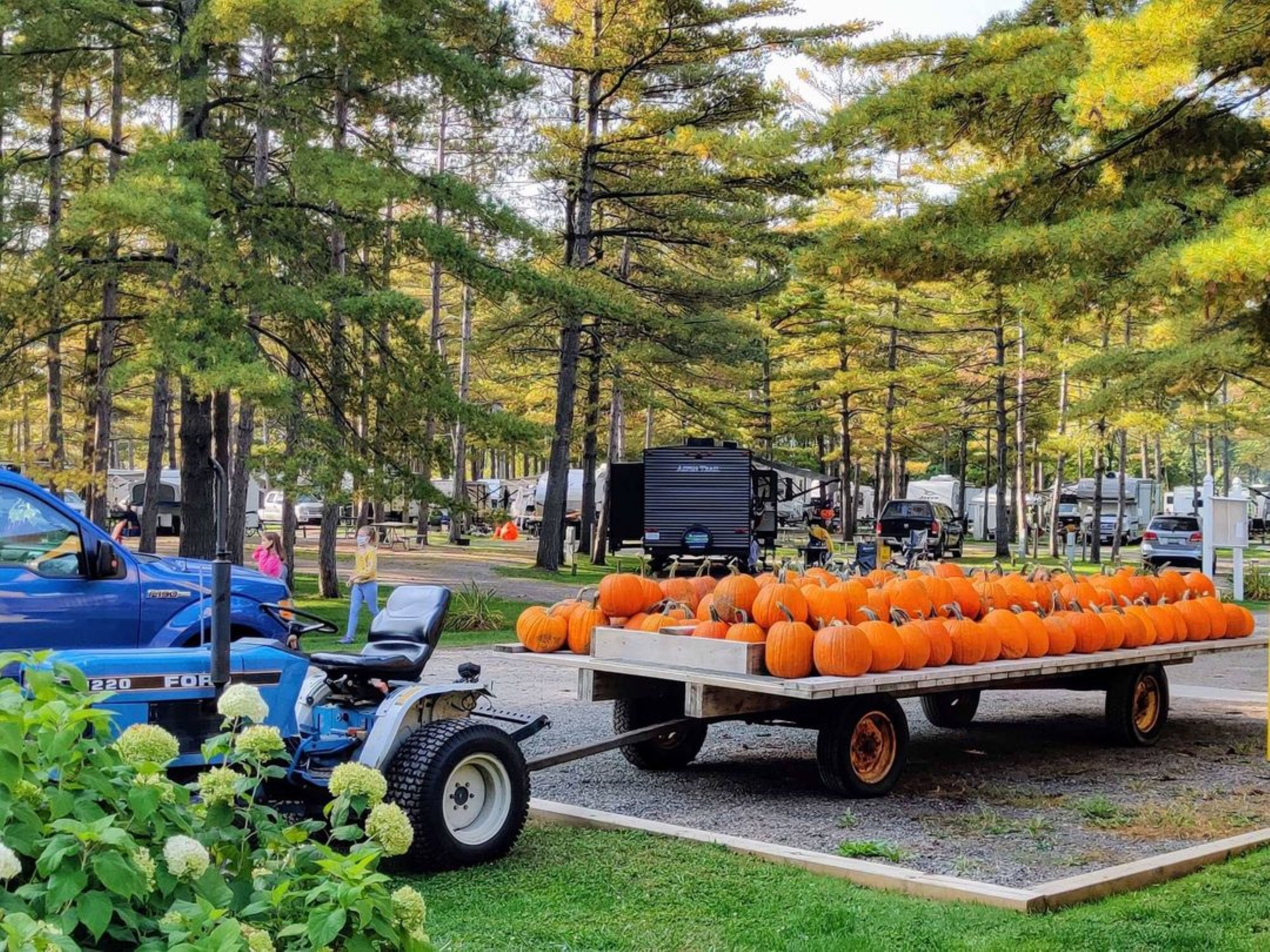 Sep 25, 2021· halloween is fast approaching, and people everywhere are getting in a spooky mood. Halloween: Event at the Cardinal / Ottawa South KOA Holiday Campground in Ontario