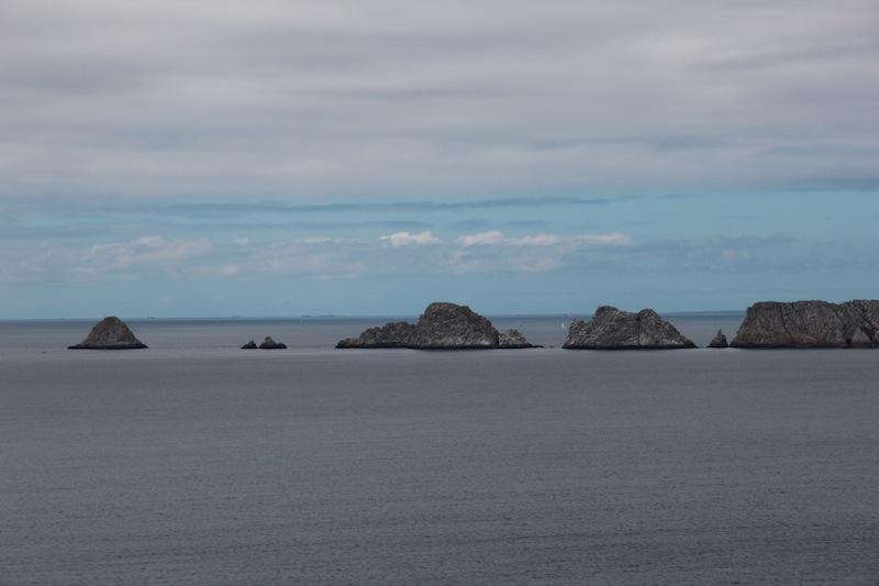 Bruyère et ajoncs à la Pointe de Dinan