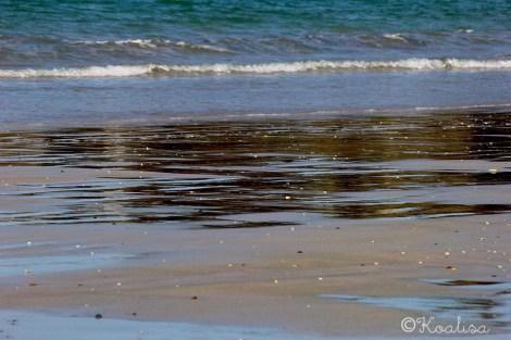 sable mouillé