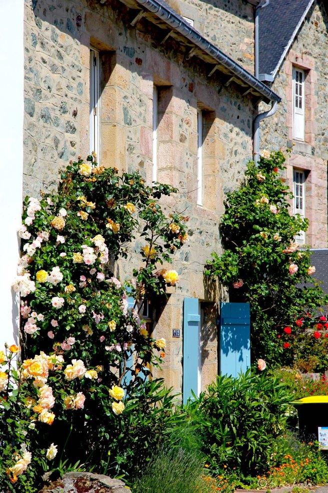 facade rosiers
