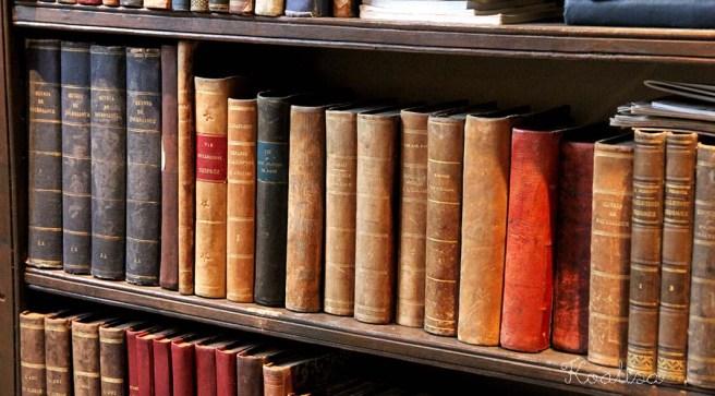 détail bibliothèque livres