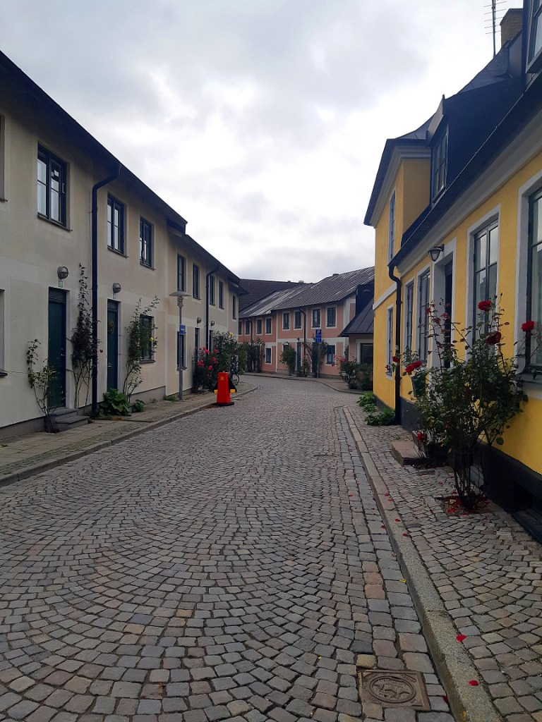 A street in Lund on an overcast day. Single-story buildings in eggshell and yellow are framed by flowering bushes on either side of their entrances.