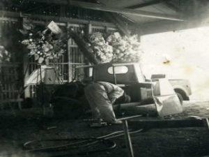 開業当時の写真