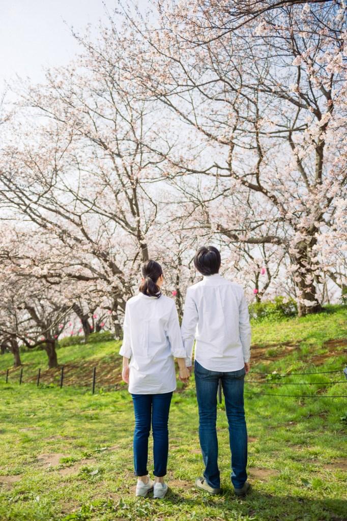二人で桜を見上げて一枚
