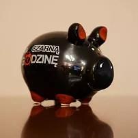 Czy bloger finansowy musi zarabiać na swoim blogu?