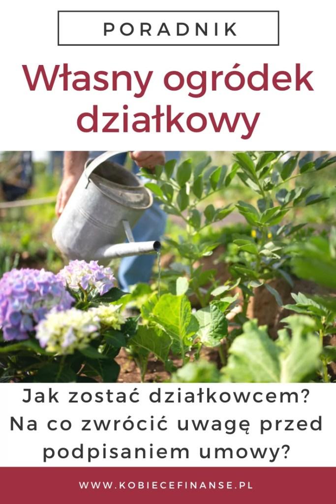 Własny ogródek działkowy - plusy, minusy, koszty, formalności - jak kupić działkę?