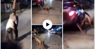 Fast Moving Car Kills A Lady Tw3rking On The Street - Video