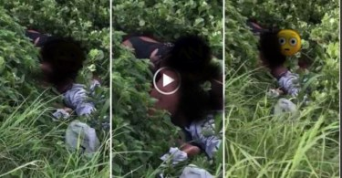 Couple c@ught red-handed doing it in the bushes in broad daylight - Video