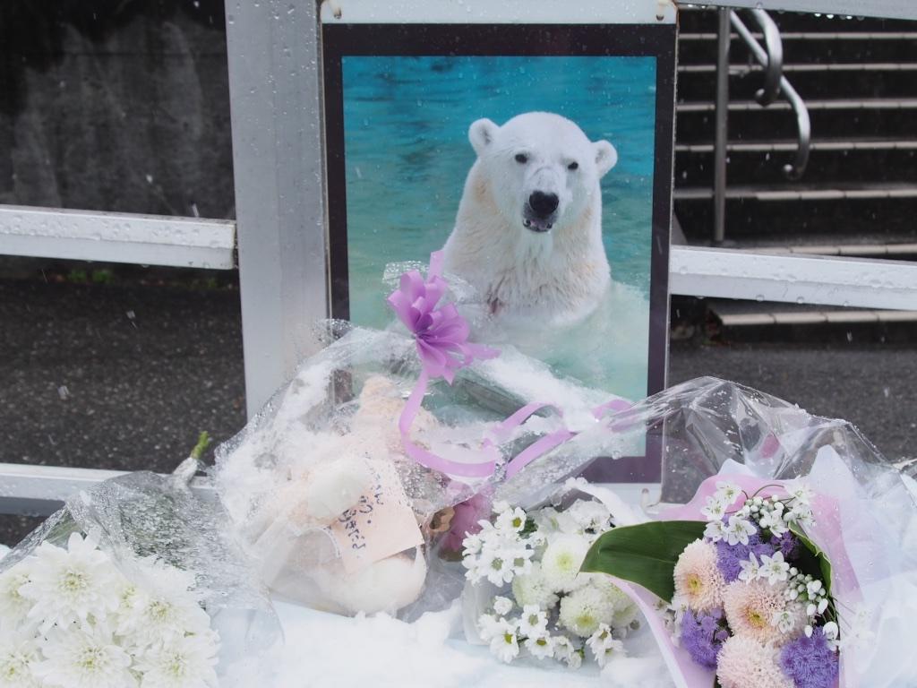 Higashiyama Zoo Foral Tribute