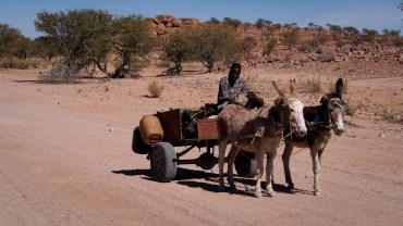 """Unterwegs begegnen wir einem """"Kalahariexpress"""""""
