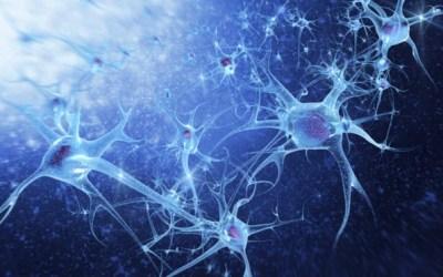 Neuropathie périphérique et myélopathie