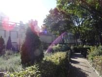 Idyllische Gärten bieten Ruhe von allem Trubel