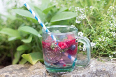 Berry Thyme Tonic 1