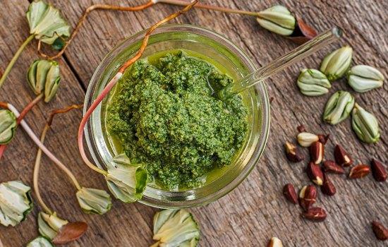 Buchensprossen-Pesto