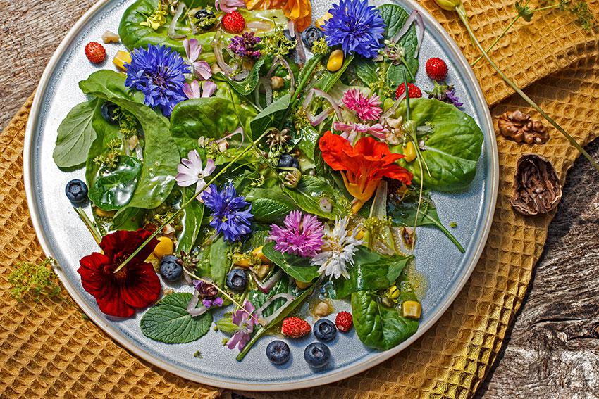 wildbluetensalat
