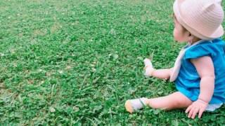 赤ちゃんと草