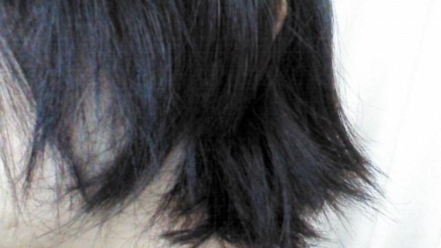 パサパサの髪