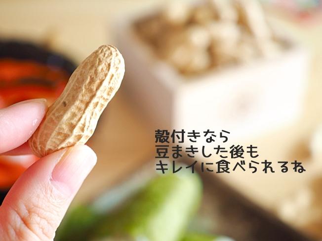 殻付きピーナッツのアップ
