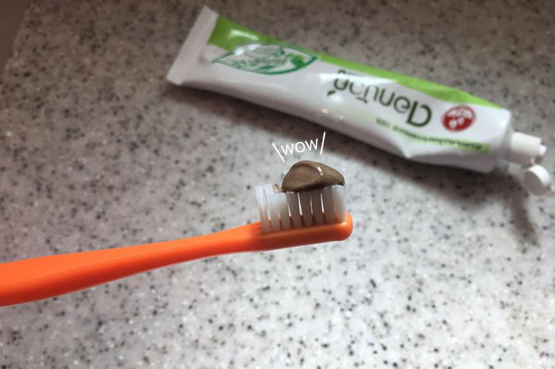 友人に頼まれたタイ土産は歯磨き粉