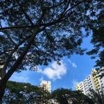シンガポールの空