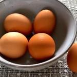 八王子の卵