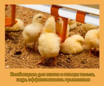 Комбикорма для скота и птицы