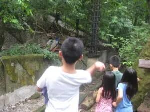 カオキアオ動物園