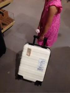 無印良品スーツケース19L