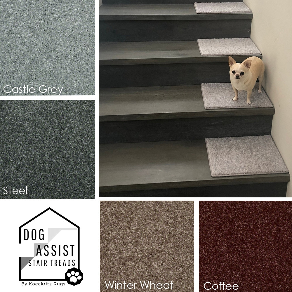 Orchard Mills Aii Dog Assist Carpet Stair Treads | Rug Treads For Steps | Turquoise | Stair Runner Matching Landing | Covering | Outdoor Carpet | Wood