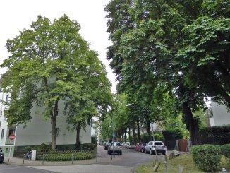 Bild aus Lindenthal