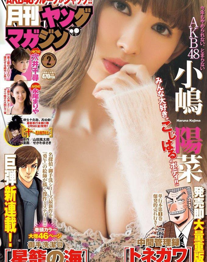 「月刊ヤングマガジン」2016年2月号