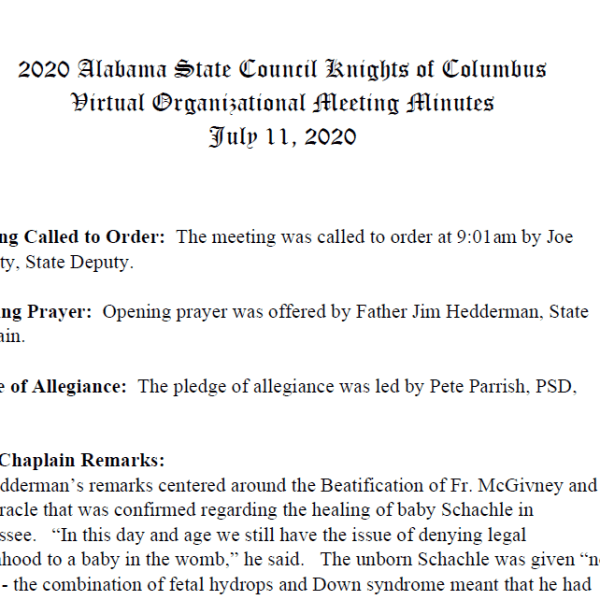 Minutes from 2020 State Organizational Meeting