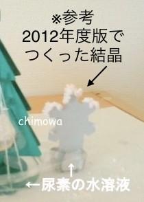 チャレンジ5年生12月号付録「結晶実験キット」の結晶の様子(2012年度版)