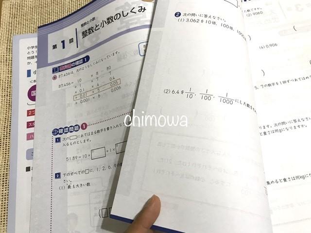 Z会小学生コース5年生おためし教材算数のページ(2021年度版)